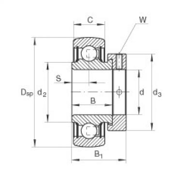 FAG شعاعي إدراج الكرات - RAE17-XL-NPP-B