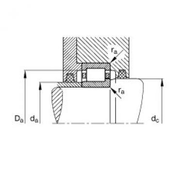 FAG محامل أسطوانية - NJ303-E-XL-TVP2 + HJ303-E