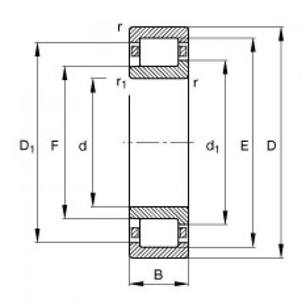 FAG محامل أسطوانية - NJ203-E-XL-TVP2 #1 image