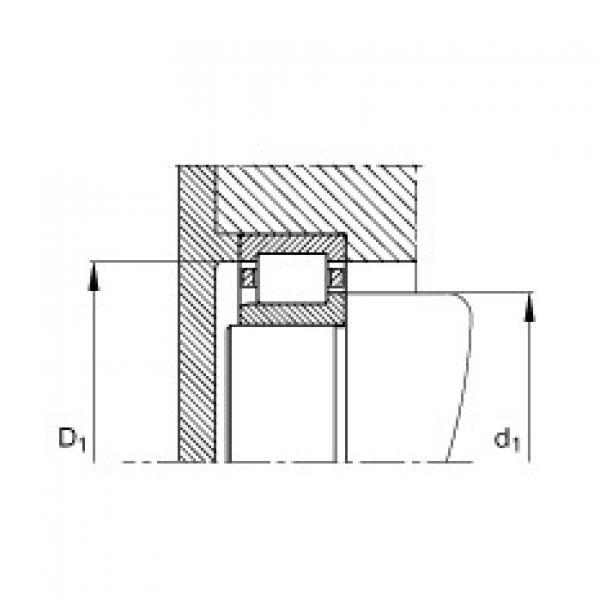FAG محامل أسطوانية - NJ203-E-XL-TVP2 #3 image