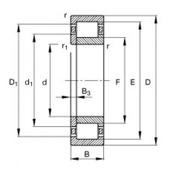FAG محامل أسطوانية - NUP303-E-XL-TVP2 #1 image