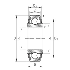 FAG شعاعي إدراج الكرات - 203-XL-KRR