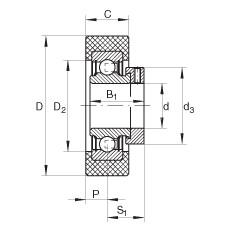 FAG شعاعي إدراج الكرات - RCSMB20/65-XL-FA106