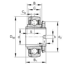 FAG شعاعي إدراج الكرات - GSH20-XL-2RSR-B