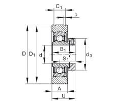 FAG شعاعي إدراج الكرات - PE25-XL
