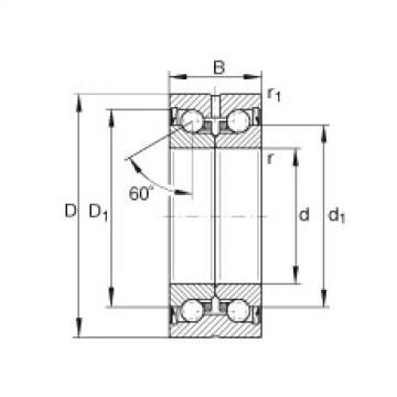 FAG محوري الزاوي الاتصال الكرات - ZKLN2557-2RS-PE