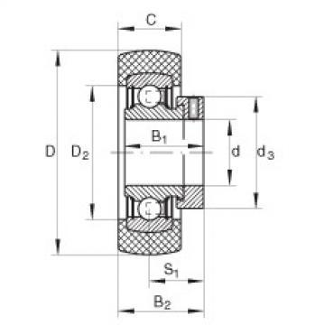 FAG شعاعي إدراج الكرات - RABRB15/47-XL-FA106