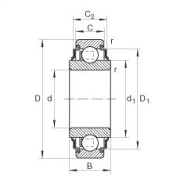 FAG شعاعي إدراج الكرات - 205-XL-KRR