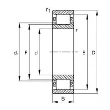FAG محامل أسطوانية - N308-E-XL-TVP2