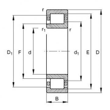 FAG محامل أسطوانية - NJ411-XL-M1