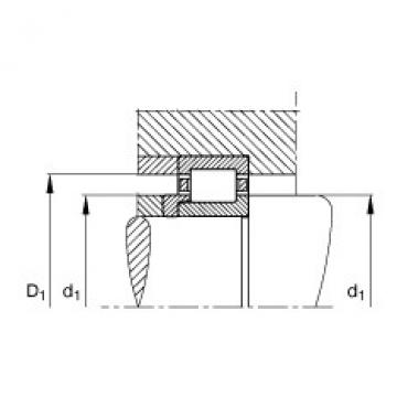 FAG محامل أسطوانية - NJ208-E-XL-TVP2 + HJ208-E
