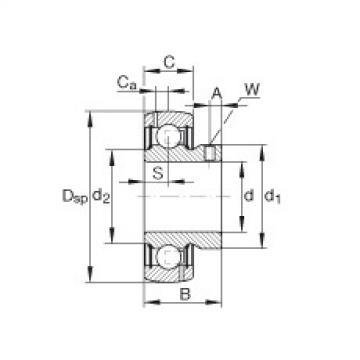 FAG شعاعي إدراج الكرات - GAY100-NPP-B-AS2/V