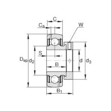 FAG شعاعي إدراج الكرات - GRA012-NPP-B-AS2/V