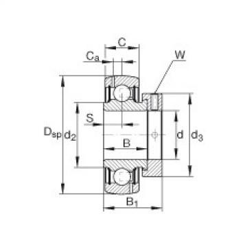 FAG شعاعي إدراج الكرات - GRA102-NPP-B-AS2/V