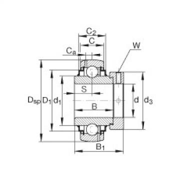 FAG شعاعي إدراج الكرات - G1106-KRR-B-AS2/V