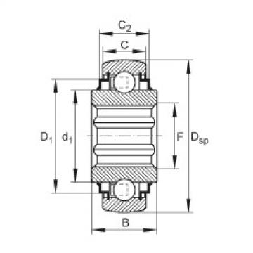 FAG Self-aligning deep groove ball bearings - SK102-207-KRR-B-L402/70-AH11