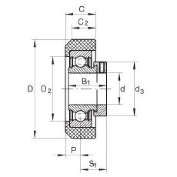 FAG شعاعي إدراج الكرات - RCRA20/46-XL-FA106