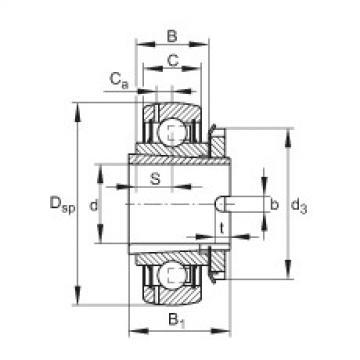 FAG شعاعي إدراج الكرات - GSH25-XL-2RSR-B