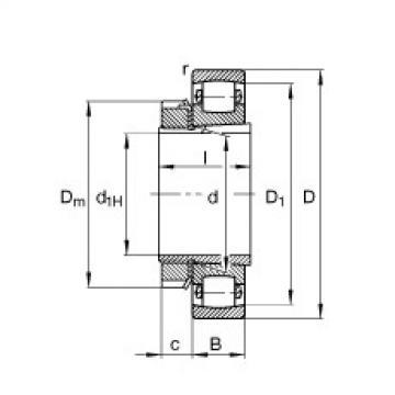FAG برميل محامل - 20206-K-TVP-C3 + H206