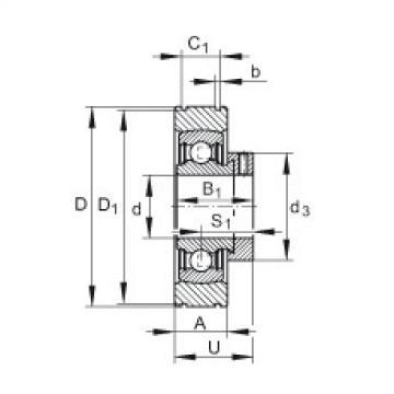 FAG شعاعي إدراج الكرات - PE20-XL