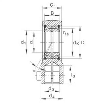 FAG Hydraulic rod ends - GIHRK25-DO