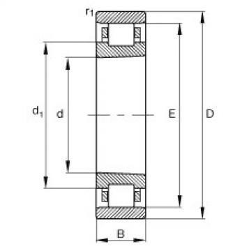 FAG محامل أسطوانية - N1008-K-M1-SP