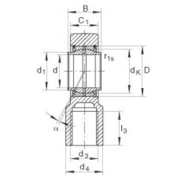 FAG Hydraulic rod ends - GIHNRK63-LO