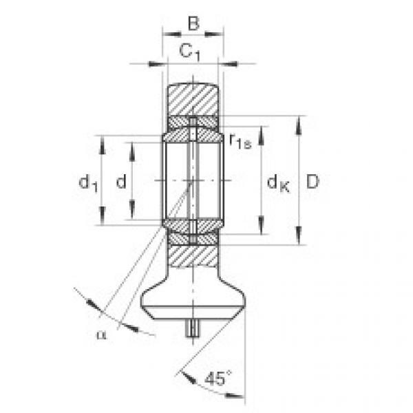 FAG Hydraulic rod ends - GK25-DO #1 image