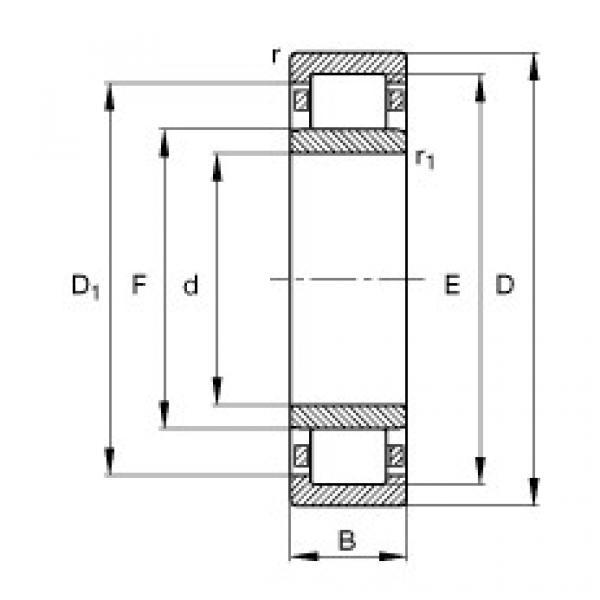 FAG محامل أسطوانية - NU1005-XL-M1 #1 image