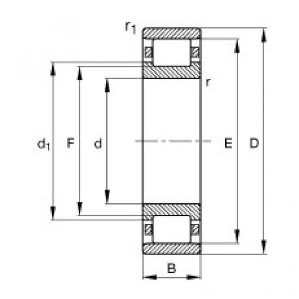 FAG محامل أسطوانية - N204-E-XL-TVP2 #1 image