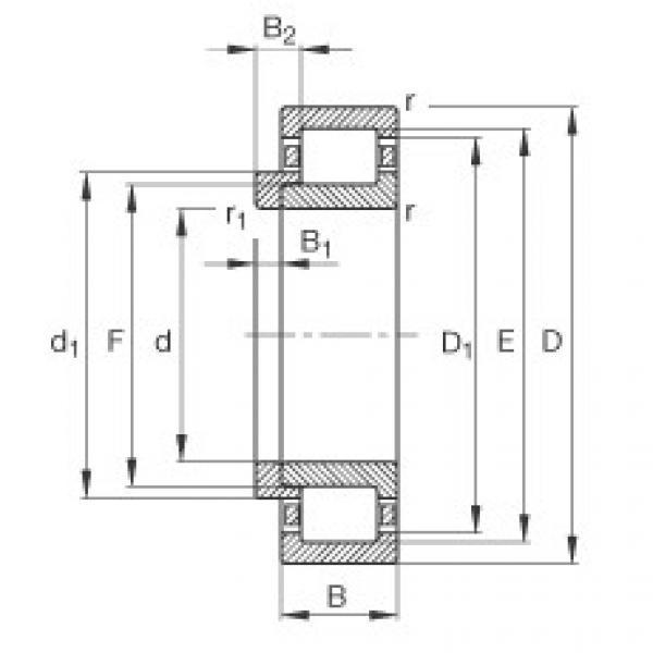 FAG محامل أسطوانية - NJ205-E-XL-TVP2 + HJ205-E #1 image