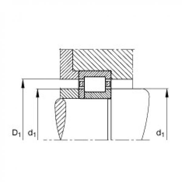 FAG محامل أسطوانية - NUP203-E-XL-TVP2 #3 image