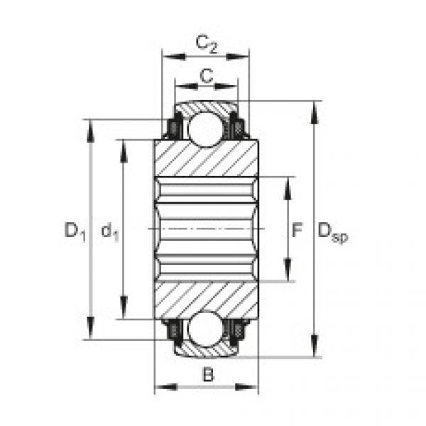 FAG Self-aligning deep groove ball bearings - SK104-210-KTT-B-L402/70 #1 image